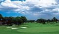 vol94-golf