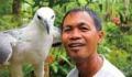 the_philippine_eagle_centert_keywords