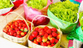 Primer - La Trinidad Strawberry Farm Thumb